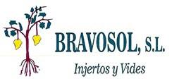 logotipo de BRAVOSOL SL